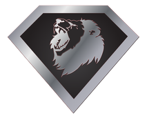 Lions Unleashed logo